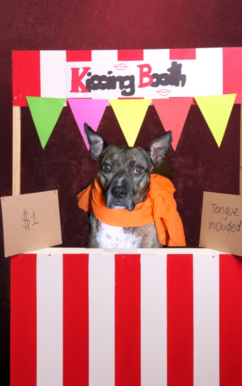 kissing booth Mayzie