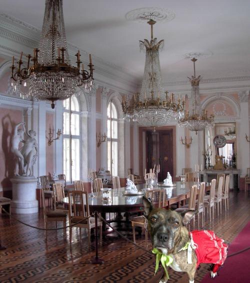 dining room wm